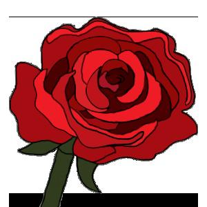 Rosa5_1